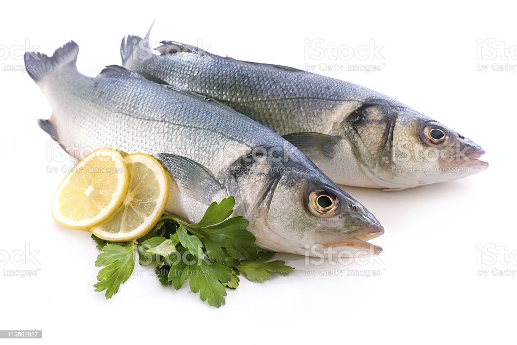 Sea bass stock photo