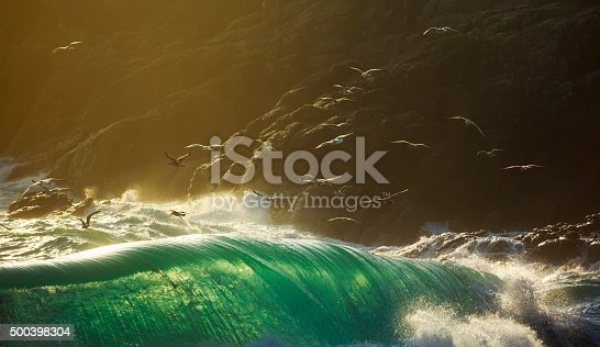 Sea birds flying over huge breaking storm waves
