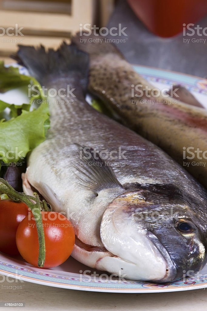 sea bream royalty-free stock photo