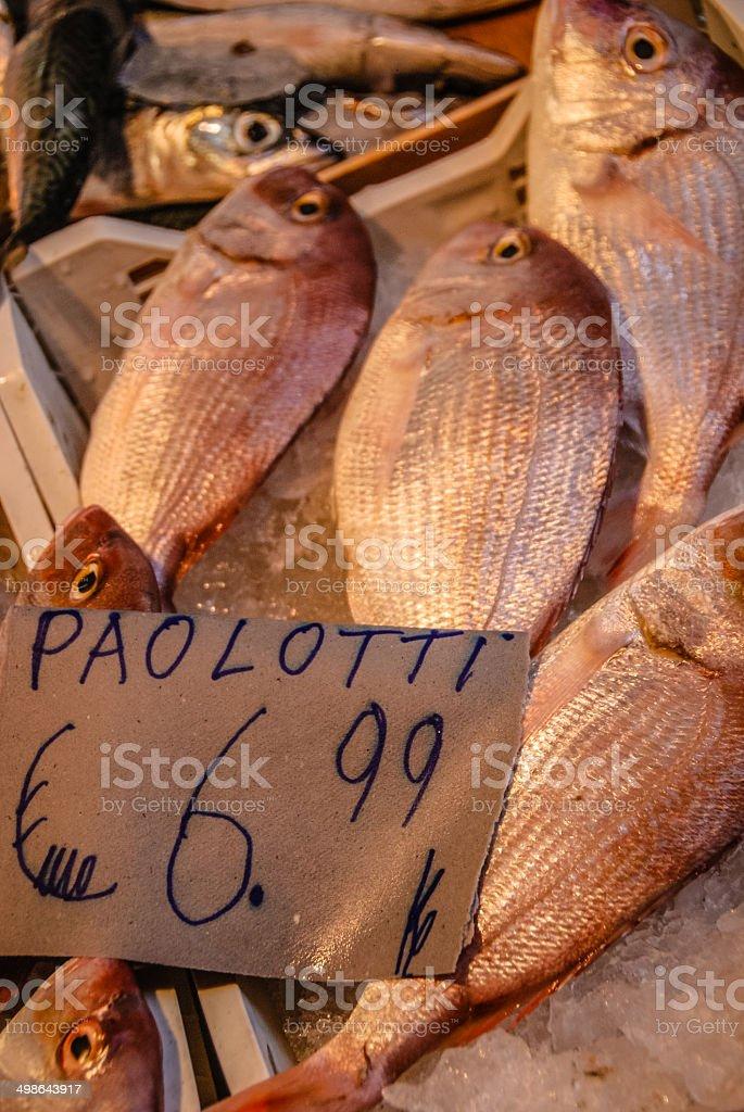 Sea Bream (Paolotti) stock photo