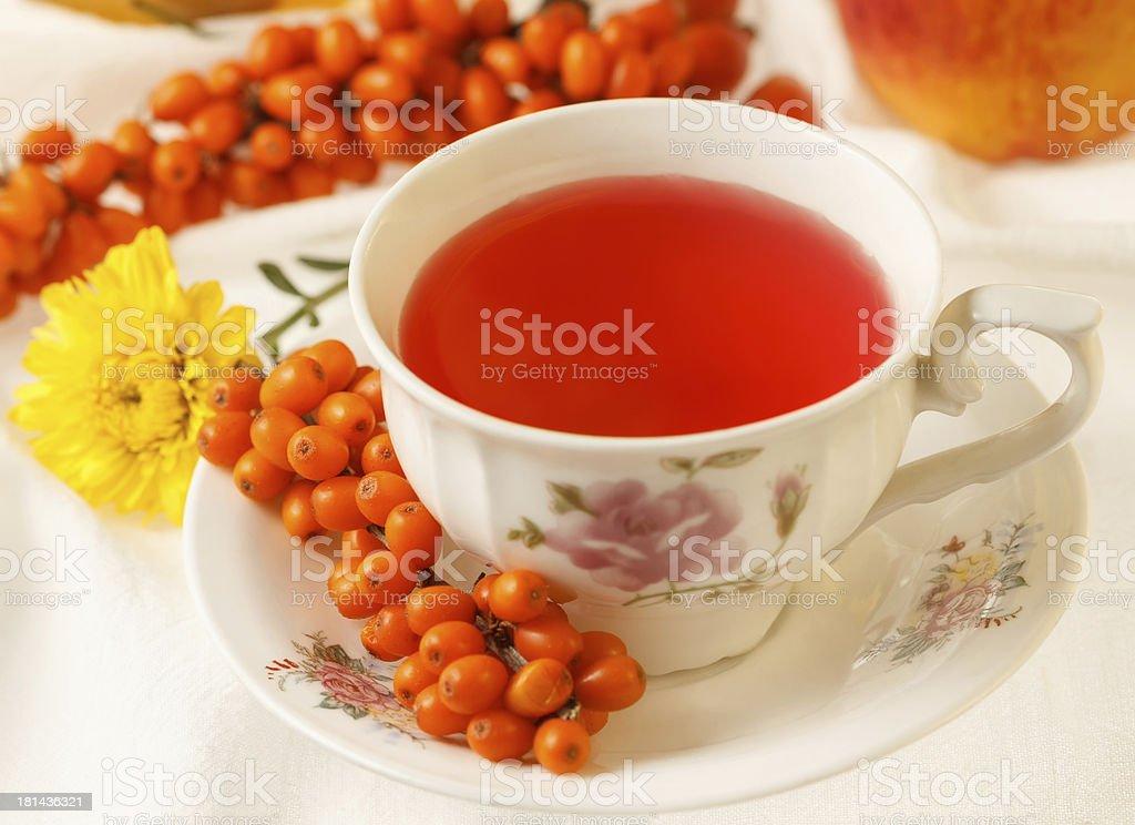 Sea buckthorn tea royalty-free stock photo