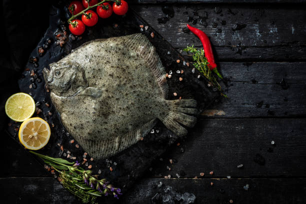 delicias marinas. mariscos frescos. pescado rodaballo - rodaballo fotografías e imágenes de stock