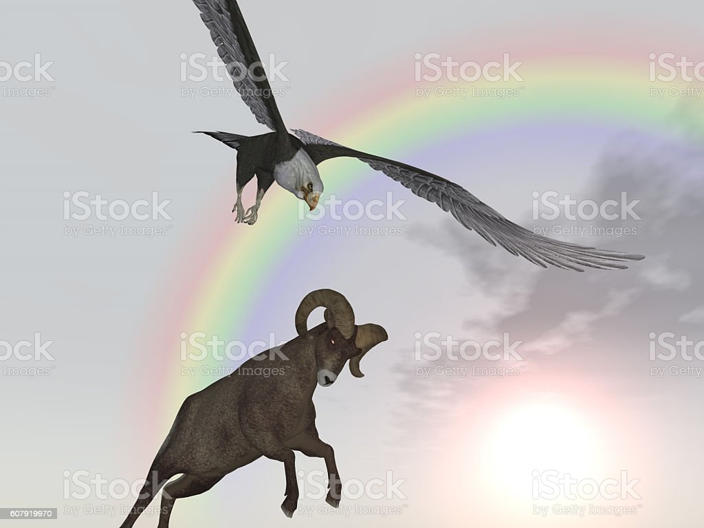 Sea Eagle Attacks Bighorn Sheep Stock Photo & More Pictures of ...