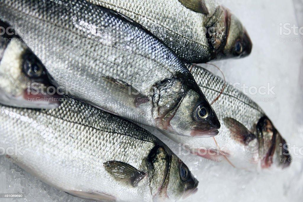 Sea fish at the market, on ice stock photo