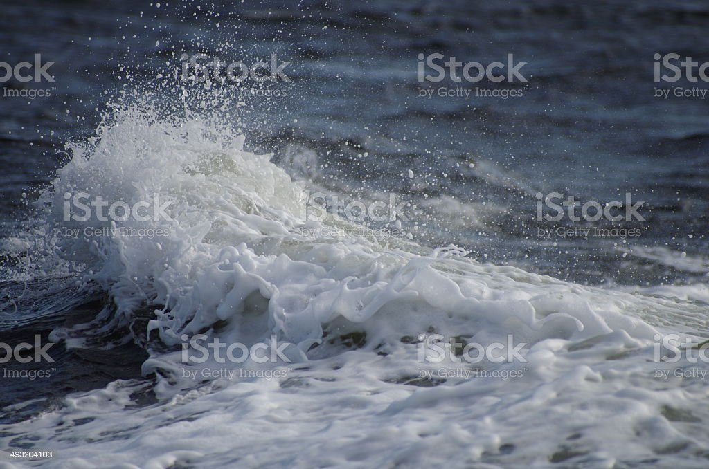 Sea Foam and Wave royalty-free stock photo