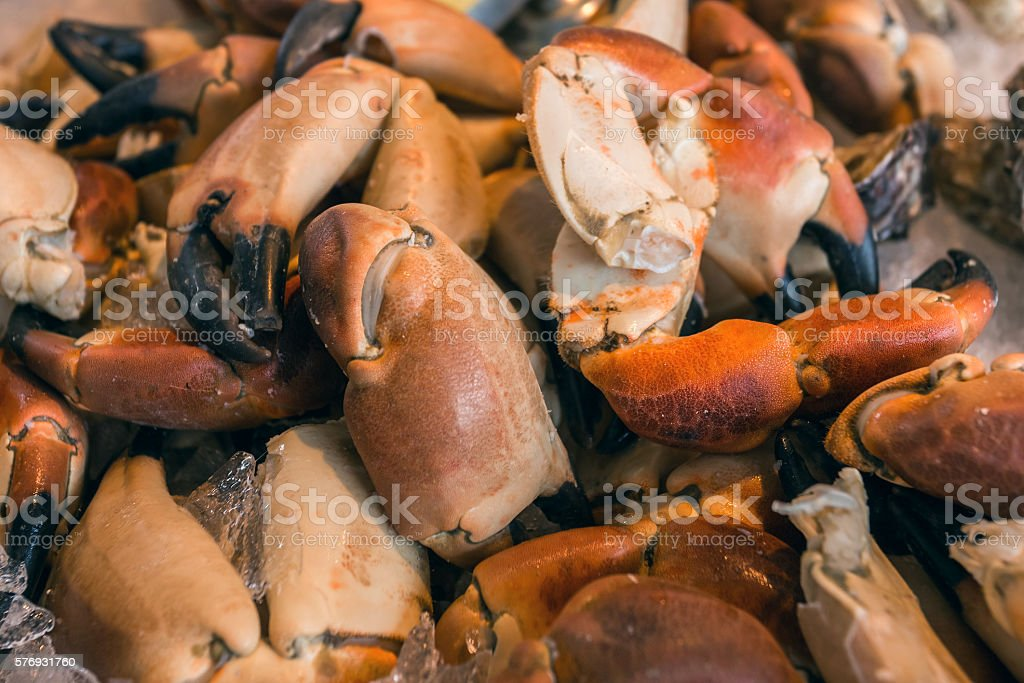 Sea food on wooden table with lemons peppers and vine stock photo