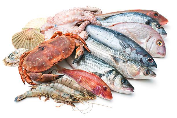 海のお - 魚介類 ストックフォトと画像