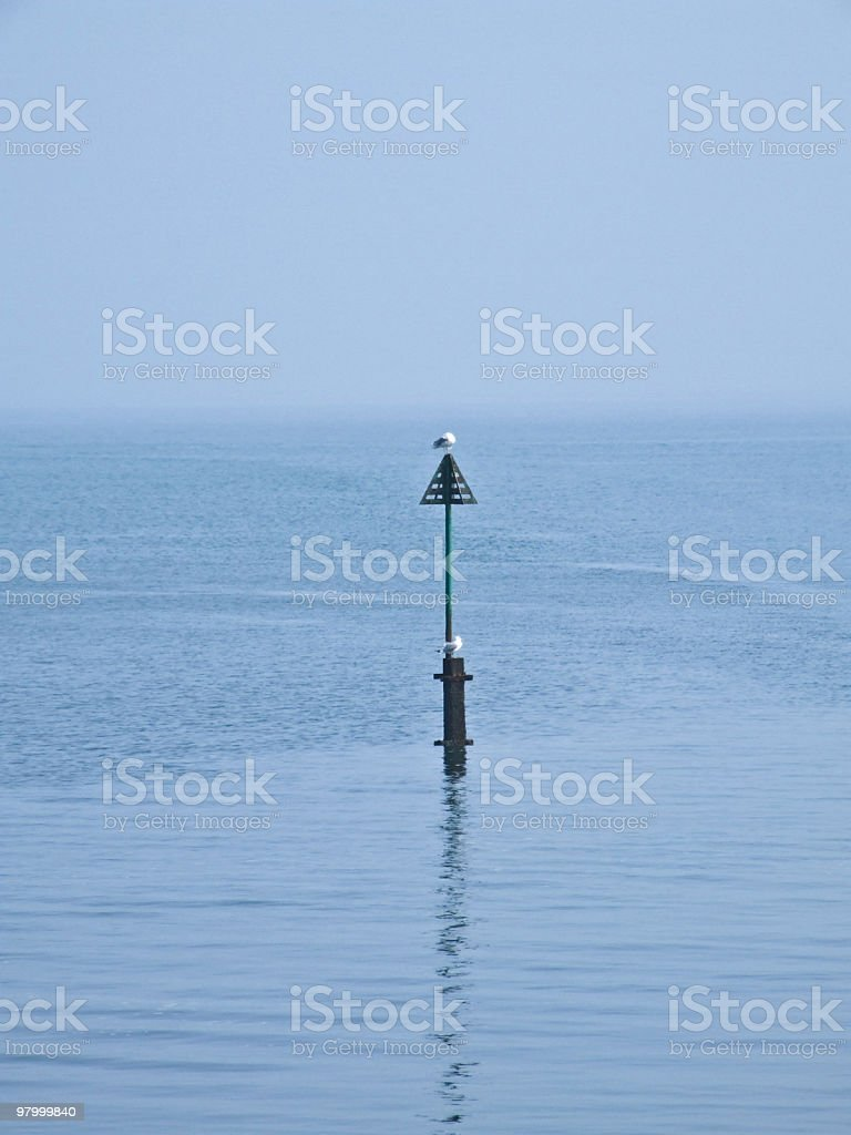 Sea Gulls On Marker royalty free stockfoto