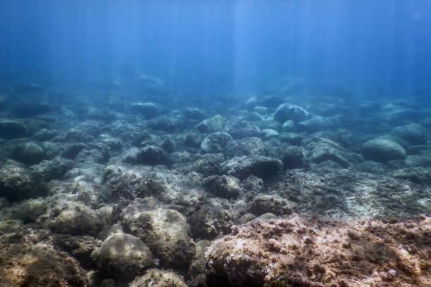 Meer Leben Unterwasser Felsen Sonnenlicht, Unterwasser-Leben. – Foto