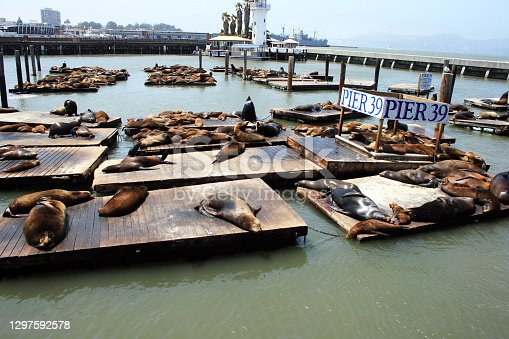 Pier 39 of the Fisherman's Warf in San Francisco, USA