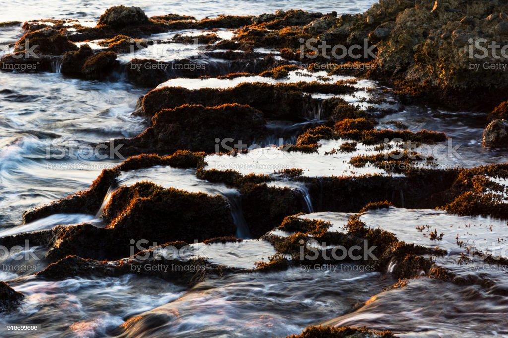 Costa rocosa del mar carnes en luz del atardecer, las formaciones de roca y alga roja visible - foto de stock