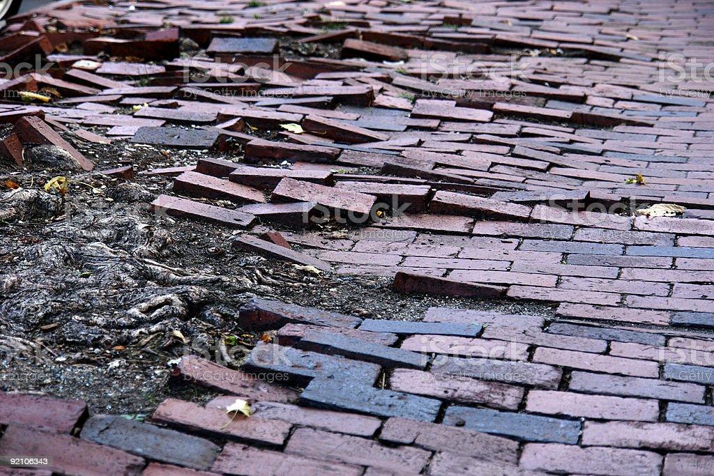 Sea of bricks royalty-free stock photo