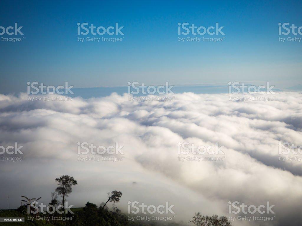 Sea of fog royalty-free stock photo