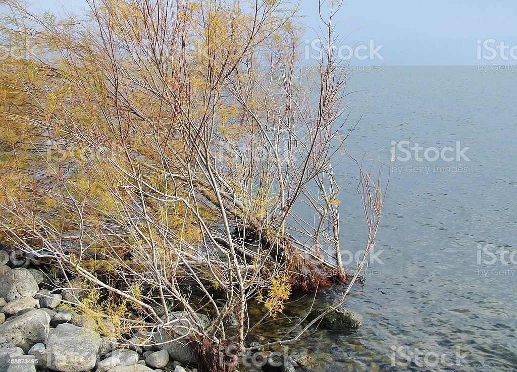 Sea of Galilee royalty-free stock photo
