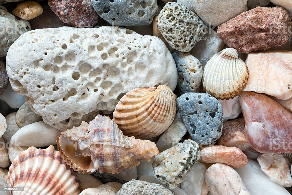 Sea Pebbles On The Beach stock photo