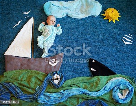 istock Sea 492820073
