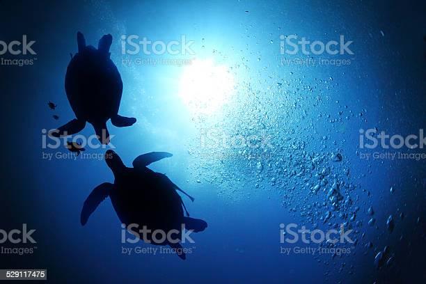 Sea picture id529117475?b=1&k=6&m=529117475&s=612x612&h=tbc20uddqpmmfwuwxihbe9ih y3yb2kivumynxdyhic=