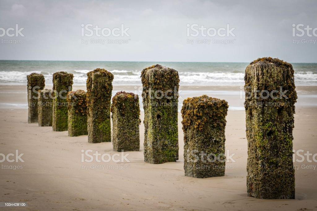 Sea piers. stock photo
