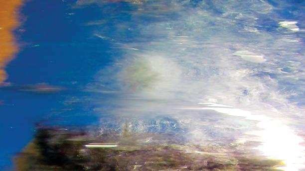 Deniz resifleri sualtı arka plan ünitesi izole stok fotoğrafı