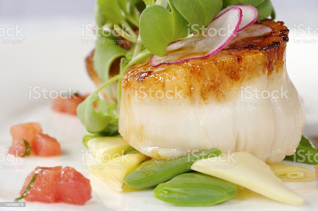 Sea Scallops stock photo