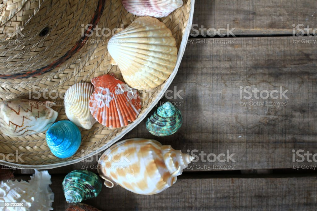 Sea shell and hat decorate on wood plate,have space for idea royalty-free stock photo
