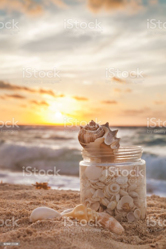 Sea Shells Collected In A Grass Jar On Tropical Sandy Beach With Sunrise Over Ocean stock photo