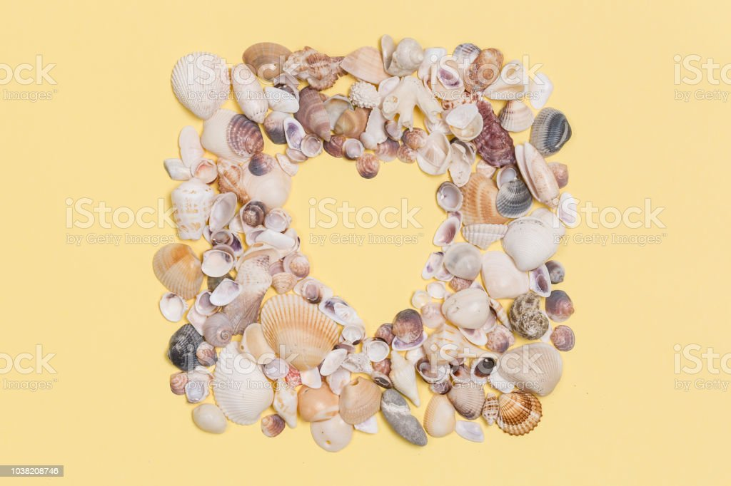 Sea shells frame with space for text on yeallow background.