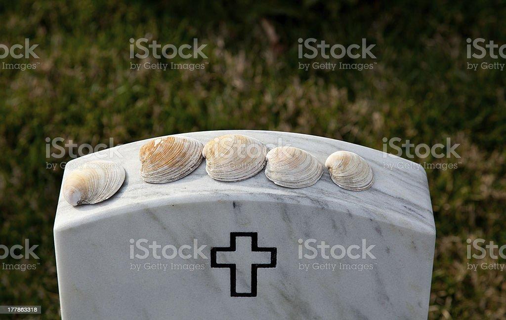 Sea shells in Arlington Cemetery royalty-free stock photo