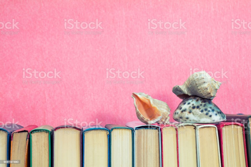 Sea shells on multicolored books at pink background. Education concept. Copy space stock photo