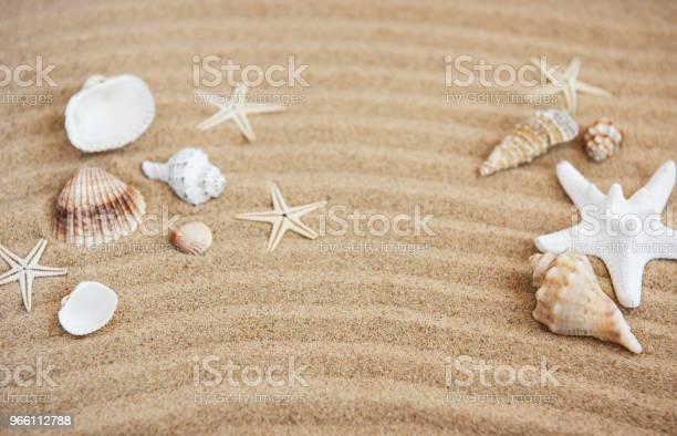 Морские Раковины С Песком В Качестве Фона — стоковые фотографии и другие картинки Белый