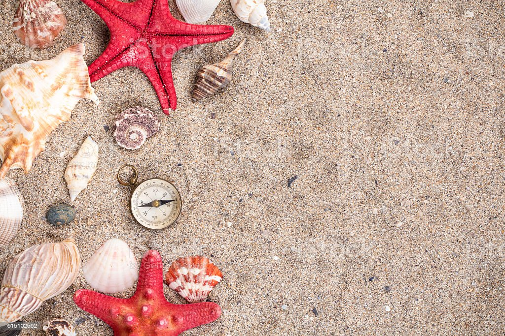 Sea shells with two red starfish and compass stock photo