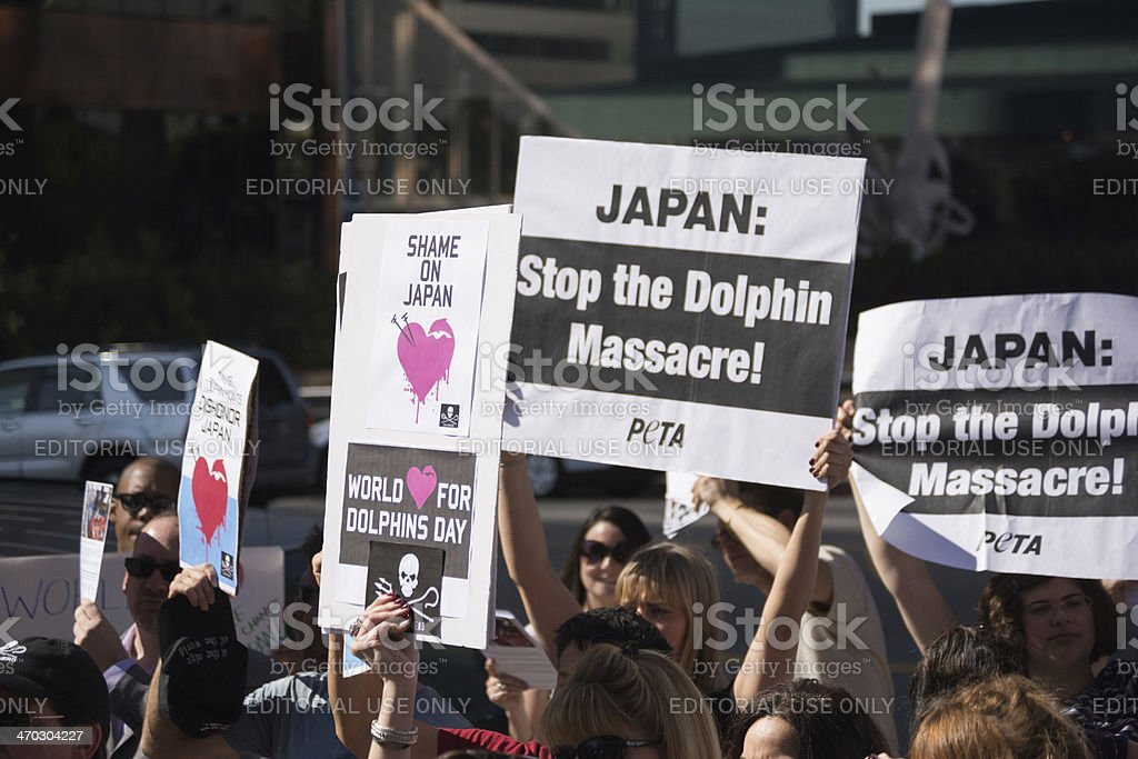 Sea Shepherd activists protesting stock photo