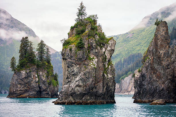 sea stacks, kenai fjords national park - fjord stock photos and pictures
