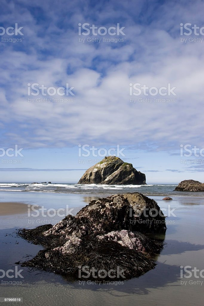 Sea Stacks on Oregon Coast royalty-free stock photo