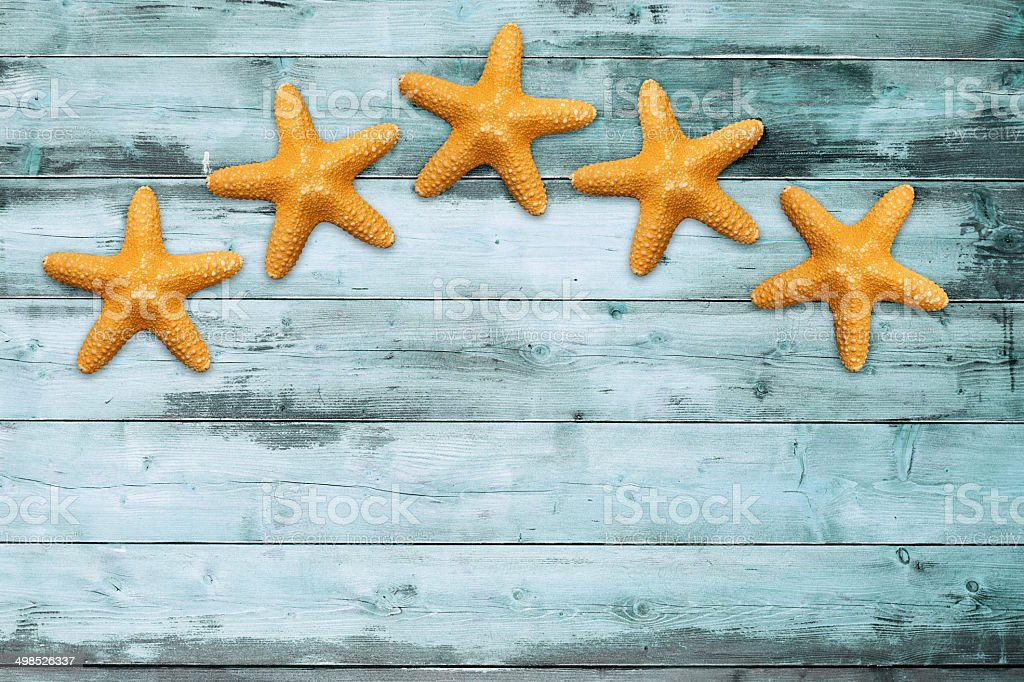 sea stars on a turquoise board stock photo