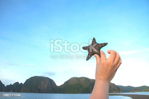sea star/star fish in the sky with hand