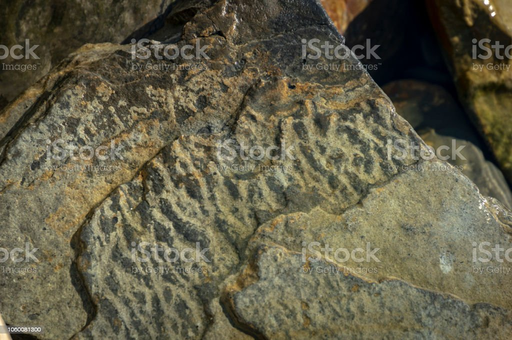 Sea stones and rocks of different sizes and texsture of black, gray and brown on the Black Sea coast as nature bacground. stock photo