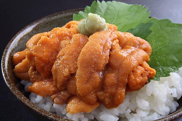 Sea urchin rice bowl with wasabi stock photo
