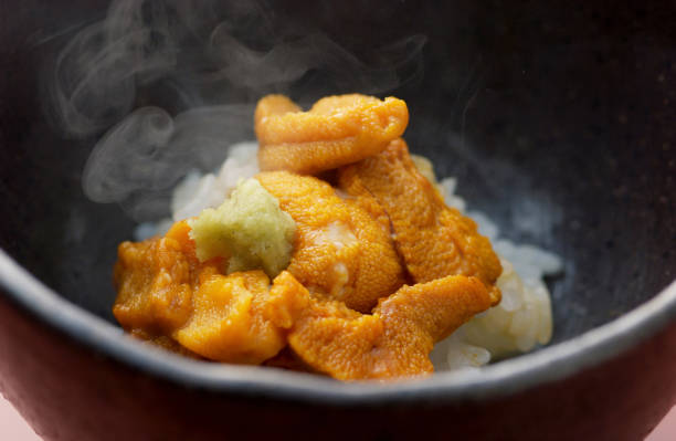 Sea Urchin rice stock photo