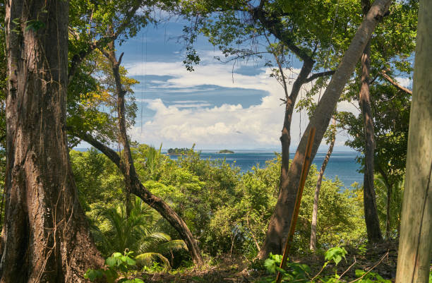 Sea view from the Contadora island in Pacific Ocean stock photo