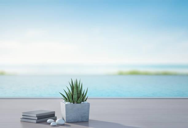 swimmingpool mit blick auf meer und terrasse im luxus-strandhaus mit unscharfen himmelshintergrund, bücher in der nähe von pflanze auf holzboden im ferienhaus oder hotel, 3d illustration der tourist resort - vorschuldekorationen stock-fotos und bilder