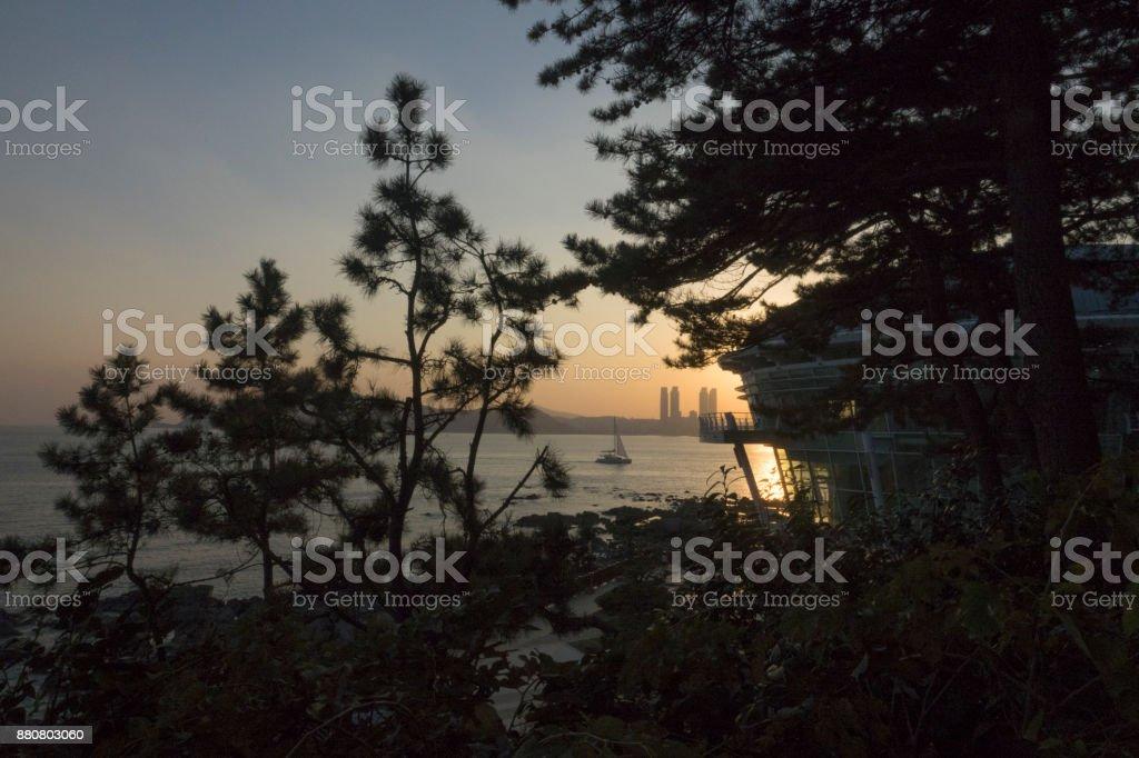 Sea view with pine trees near Nurimaru APEC House Busan, South Korea stock photo