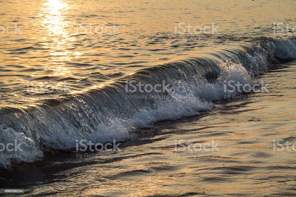 Sea wave in a golden sunset light royalty-free stock photo