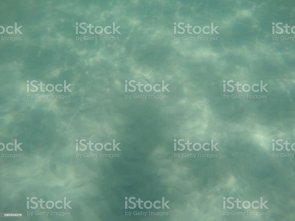 Seabed royaltyfri bildbanksbilder