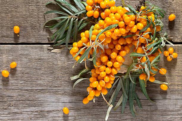 seabuckthorn berries branch on vintage wooden background. top vi - 씨벅턴 뉴스 사진 이미지