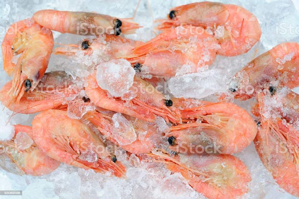 Seafood and Ice stock photo
