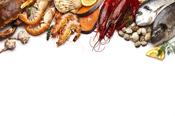 Seafood border with white copy space - foto de stock