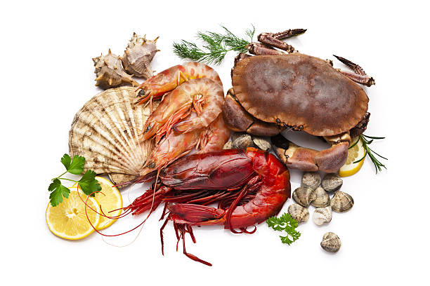 Seafood: clam, scallop, prawn, shrimp and crab stock photo