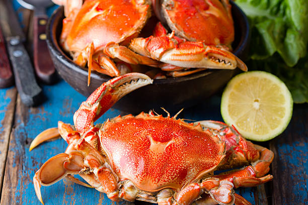 Seafood. Crabs in clay bowl on wooden background stock photo