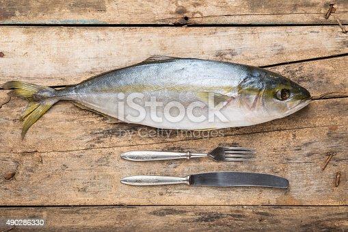 156872766 istock photo Seafood culinary recipe background 490286330